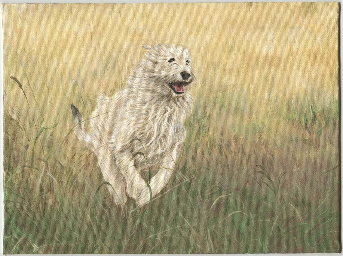 Dog Painting by Amy Lockhart