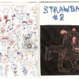 amylockhart-zine-strawbaby02-002